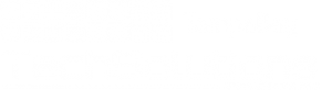 tampa-bay-tech-solutions-white-logo